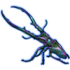 Beetle: Cyclommatus metallifer [Chromatic]