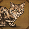 Black Footed Cat Decor