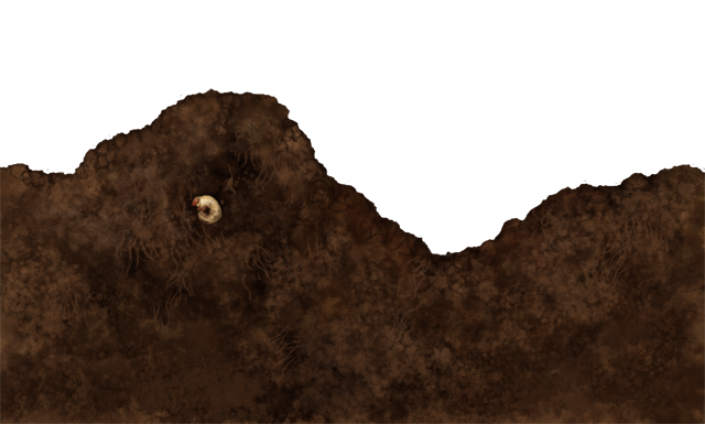 A small beetle larva, half-burried in a mound of dirt.