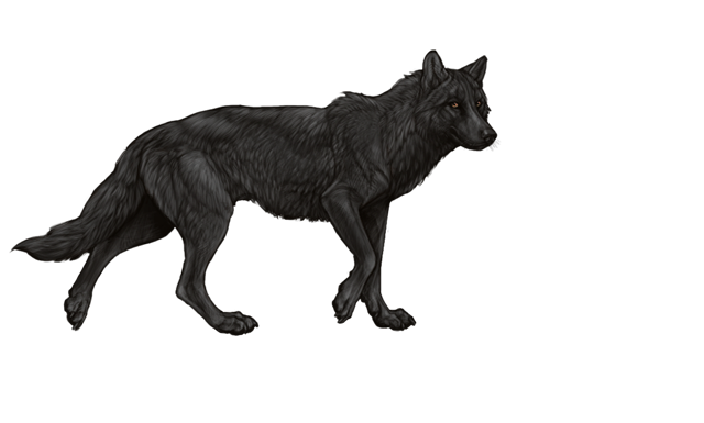 wolfday.png