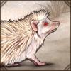 albinohedgehog.png