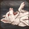 albinowolfy.png