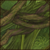 mossyhanginbranches.png