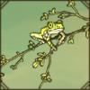 peacockfrog1.png