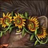 treasureflowercrown.png