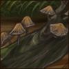 treemushrooms.png