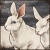 whitebunnies.png