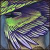 wingsof_sunbird.png