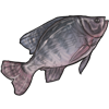 Nommable Fish item.