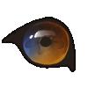 Eye Changer applicator.