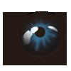 app_eye_drongo.png