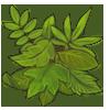 greenfools.png