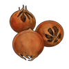 medlarfruit.png