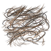 tailhair.png