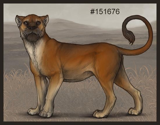 2019-dec-hyena-poll.jpg