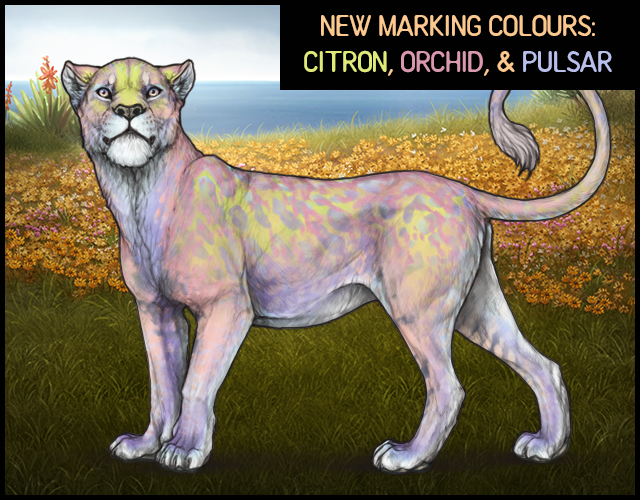 A mockup containing a lioness with the Kunzite base, Dawn eyes, and a Greige nose. The lioness has intentionally been given conflicting marking colours to showcase the new marking sets. Her markings are, in order: Blue Indri, Feline 7 Orchid, Citron Crust, Pulsar Margay, Feline 9 Orchid, Pulsar Mottled Vents, and Under White 3.